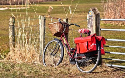De tulpenroute op de fiets ontdekken