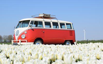 Tulpenroute Flevoland: van 10 april tot en met 2 mei