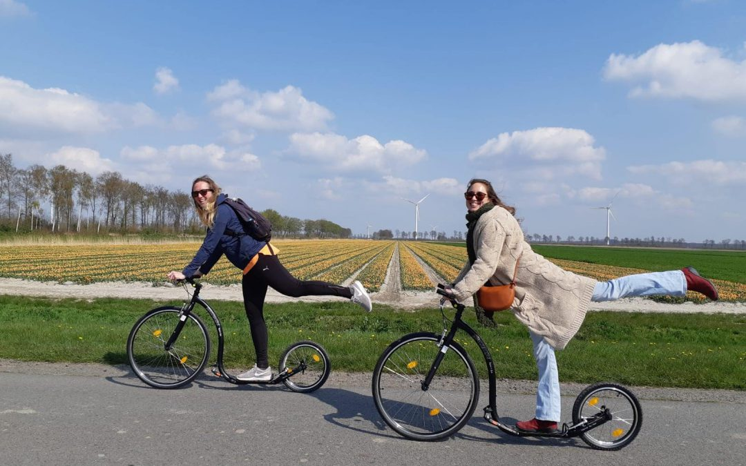 Auto- fiets- en wandelroutes
