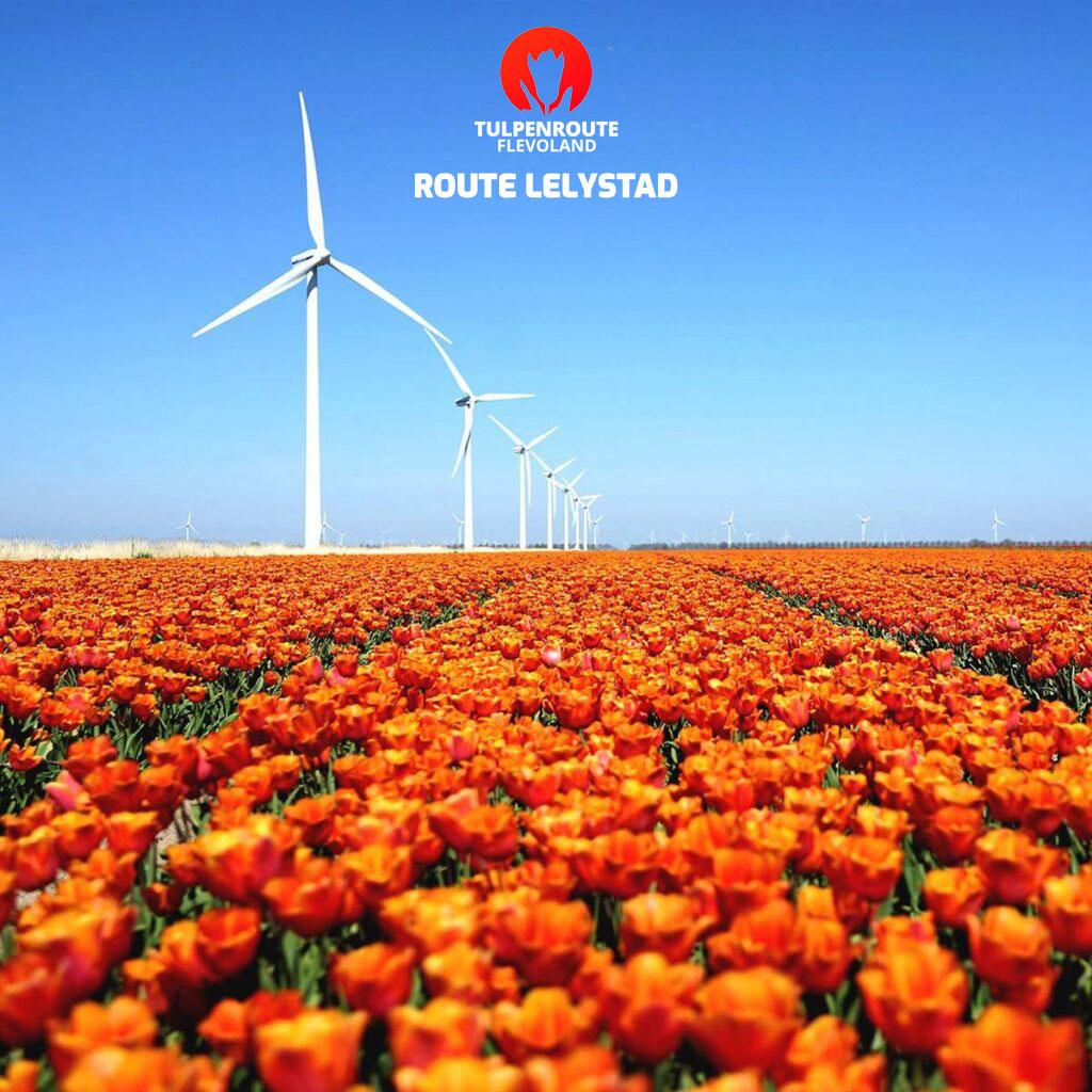 Bestel tickets voor de route in Lelystad!